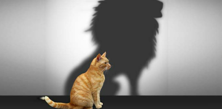 """How to Overcome the """"Selling"""" Fears!"""